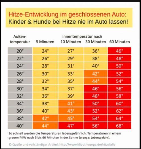 temperatura masina