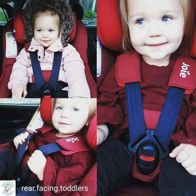 toddler puffy coat joie